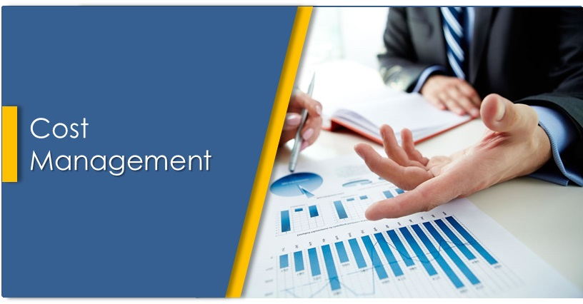 cost management plan template